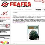 feafesmurciaweb150